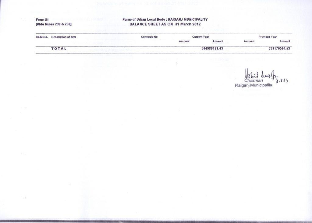 2011-12-balance-sheet-3